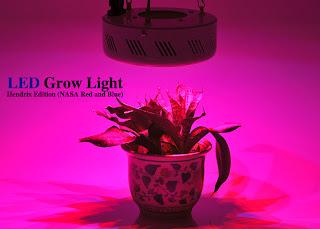Lampu Led Untuk Mempercepat Pertumbuhan Tanaman