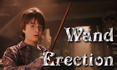 Harry Potter from Year One suprised at what his wand is doing, accompanied by the title Wand Erection, which sounds a little like One Direction