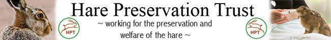 The Hare preservation trust