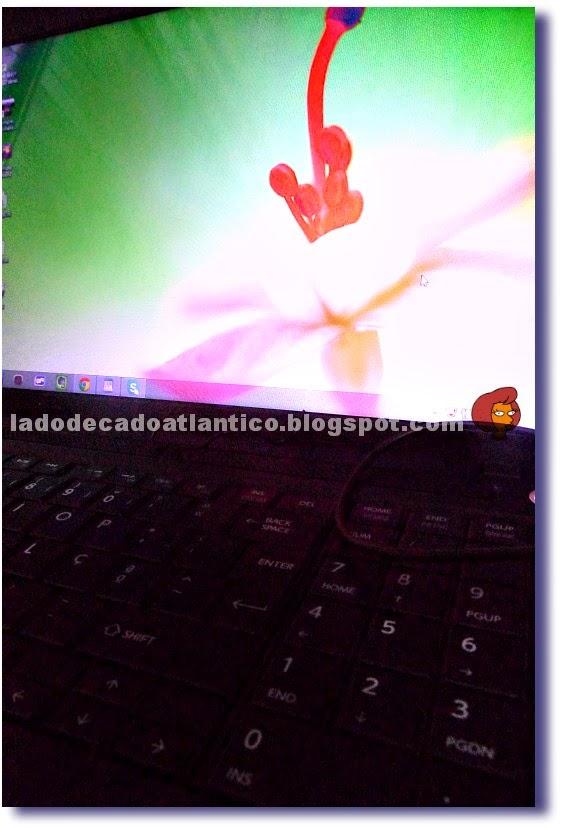 Imagem de tela e teclado de um notebook Toshiba Satellite