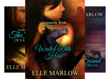 The Native Brides Series