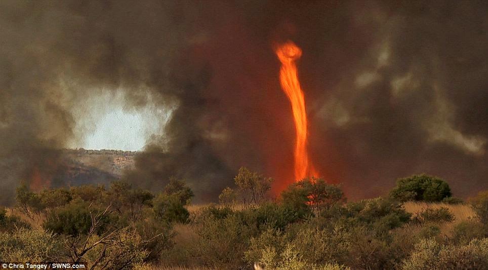 fenomena alam aneh tornado api