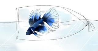 www.ikanlaga.org