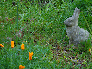 Bunny Yard Sculpture with Orange Poppies