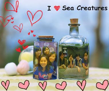 ♥Sea Creatures ♥