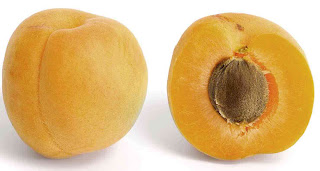 benefits_of_eating_apricots_fruits-vegetables-benefits.blogspot.com(4)