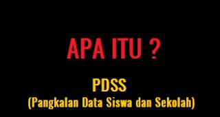 apa itu PDSS? pengertian pdss SNMPTN