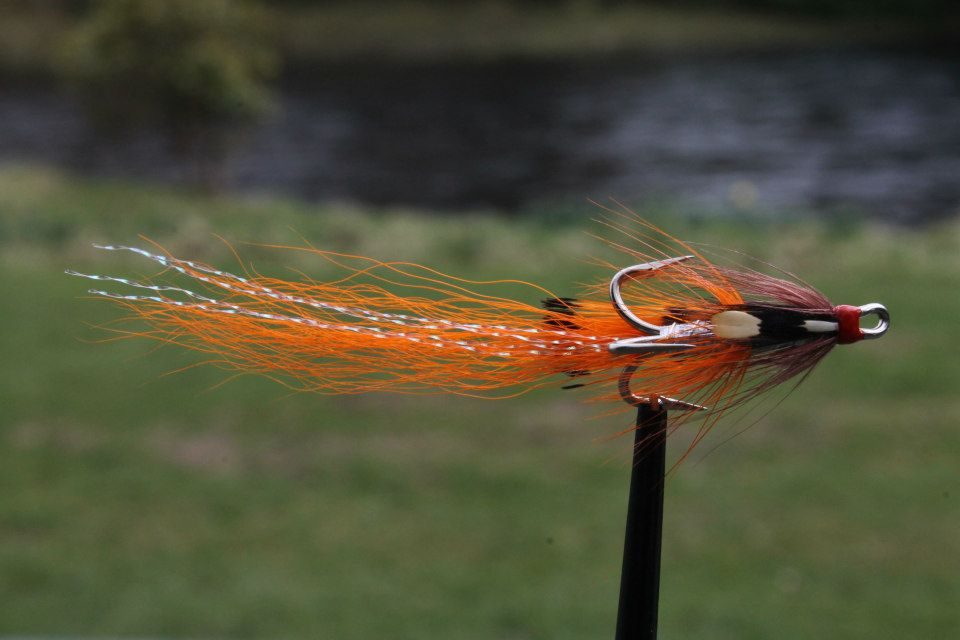 Salmon fly shadow shrimp salmon fly for Shadow fly fishing