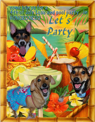 2nd Annual 4th of July Pool Pawty and Luau