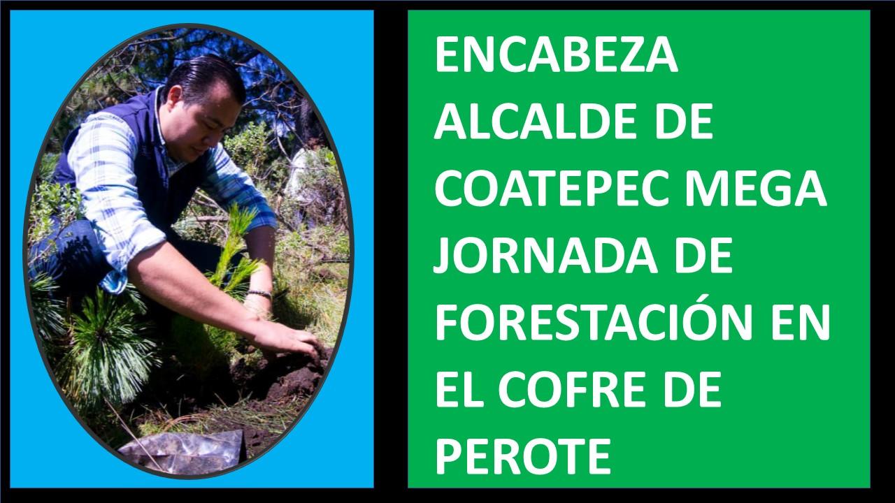 ALCALDE DE COATEPEC