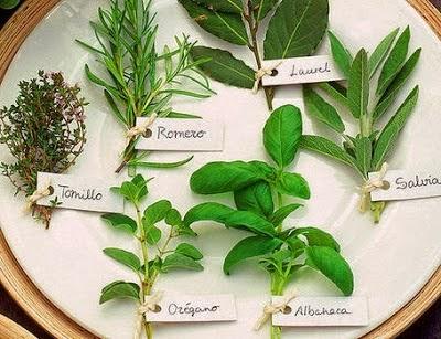 Herbolaria luzgitana for Mezclas de plantas medicinales