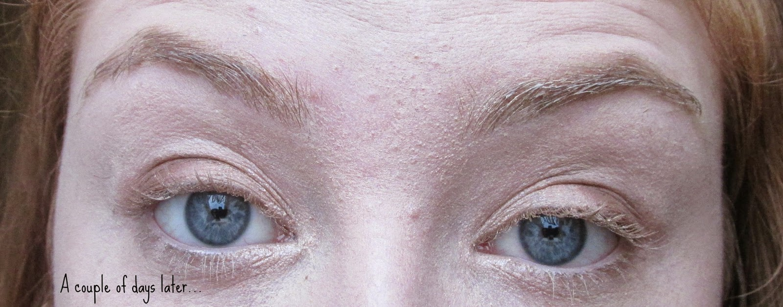 A South Wales Blog Beauty Eyebrow Waxing