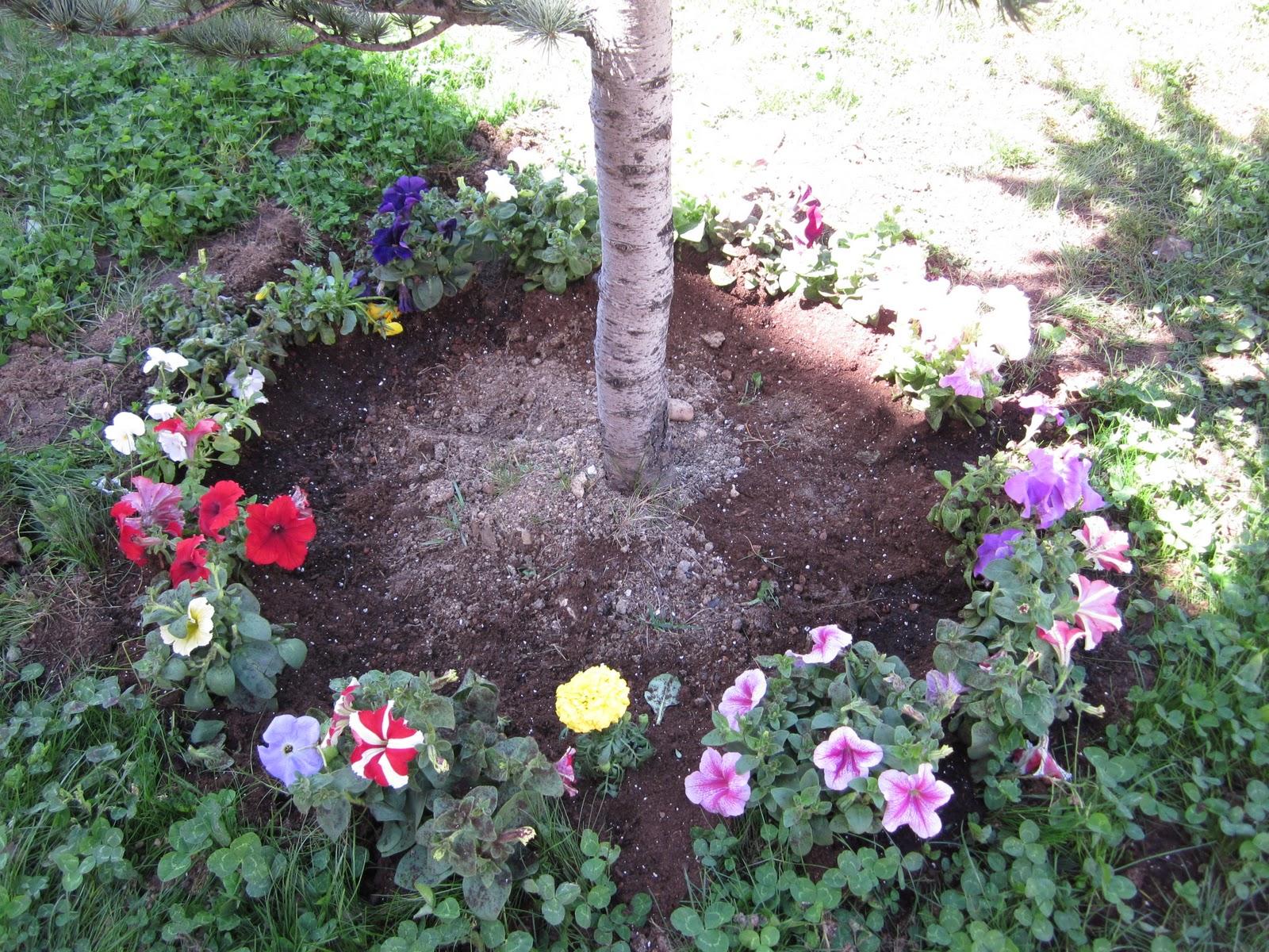 Los ratitos de infantil hortensia el hada de la primavera for Jardin infantil los pinos