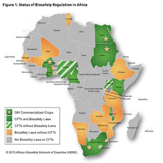 Status of Biosafety Regulations in Africa