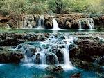 الماء سر الحياة
