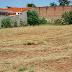 DSM intensifica trabalhos de limpeza do mato nos bairros