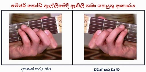 guitar_left_hand_right_hand_for_major