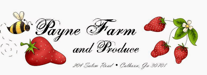 Payne Farm and Produce