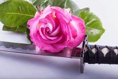 Poesia - Espada de Pétalas -