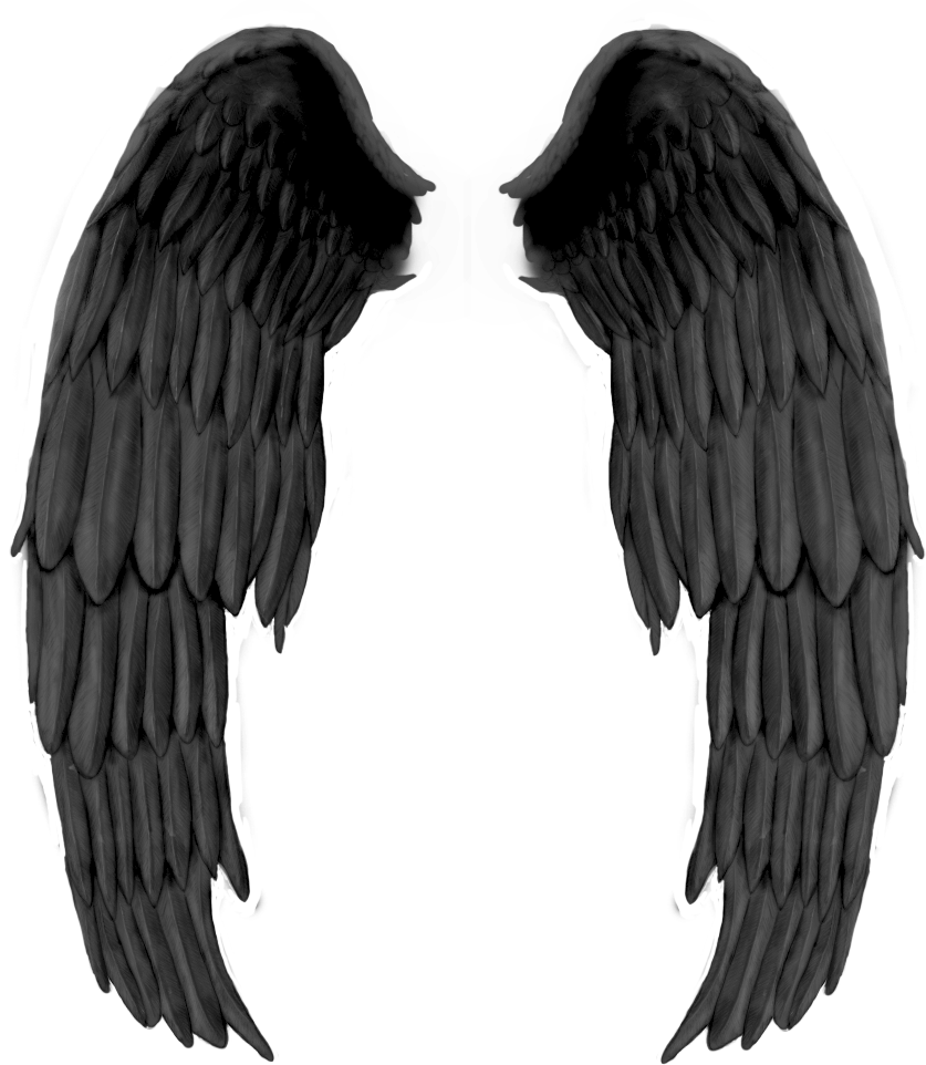 asas de anjo ficam - photo #5