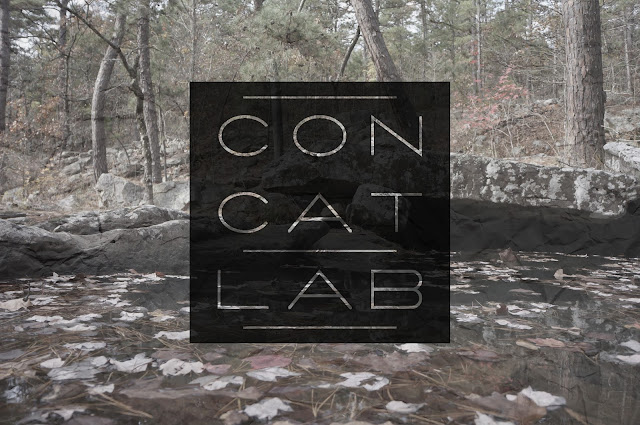 nature photo with concatlab 3x3 grid logo and crumpled paper texture