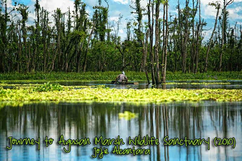 Agusan Marsh Wildlife Sanctuary
