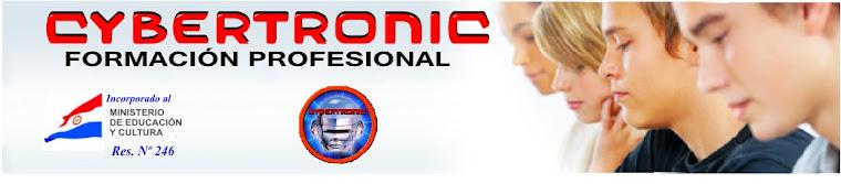 Cybertronic Informatica