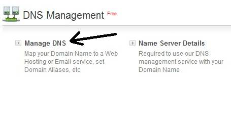 Manage DNS of Bigrock