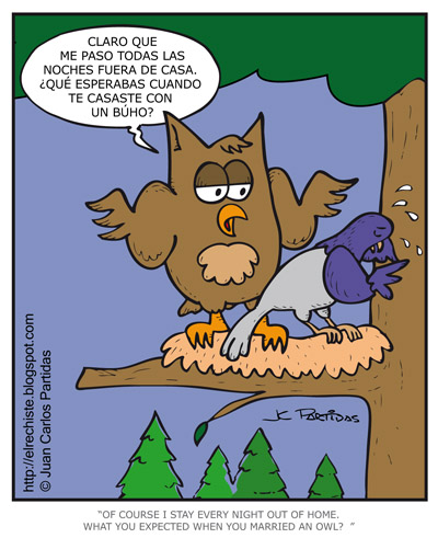 caricatura buho owl cartoon