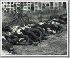 Matanza de Badajoz