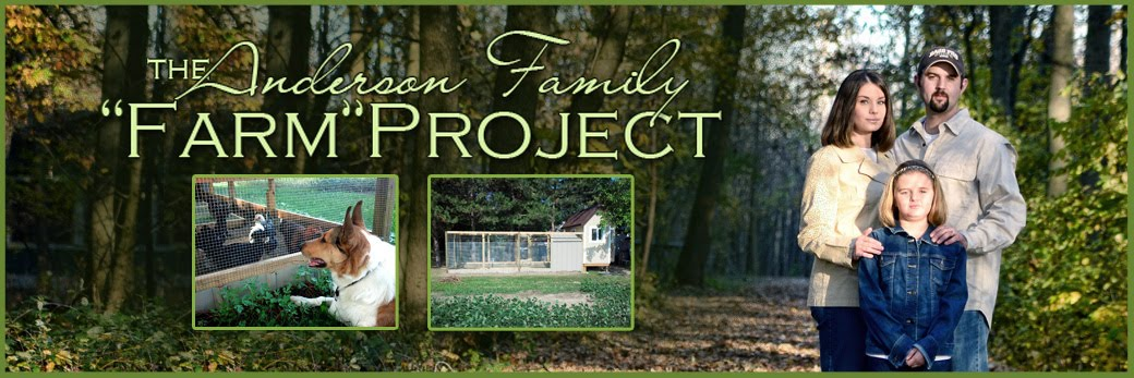"<center>Anderson Family ""Farm"" Project</center>"