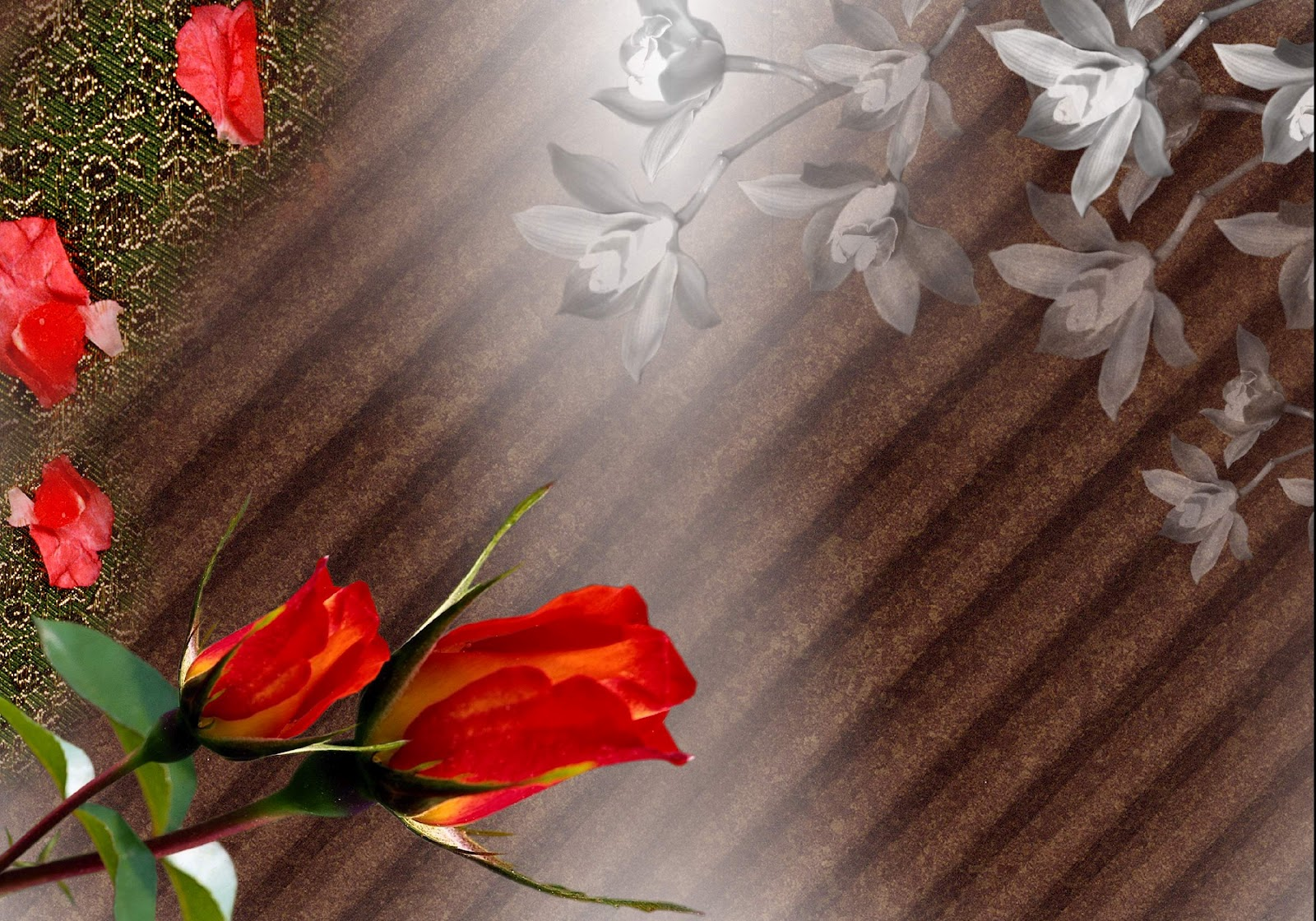 http://2.bp.blogspot.com/-AzGXXKiIOC4/UD9cKhnrQtI/AAAAAAAAJJ4/uQ7Q-HEhgWE/s1600/flower-photo-frame-background.JPG