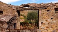 Uma janela com vista para o douro vinhateiro