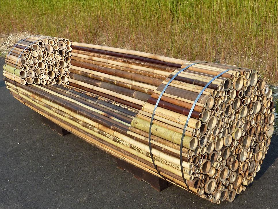 mi bambou archi tech design design visionnaire avec d 39 autres fous du bambou. Black Bedroom Furniture Sets. Home Design Ideas