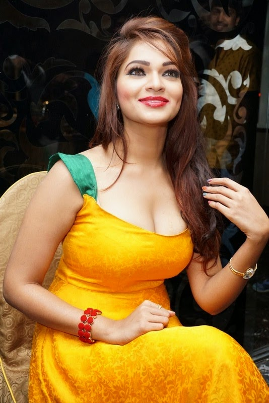 Ashwini Sizzling Hot Photo Gallery
