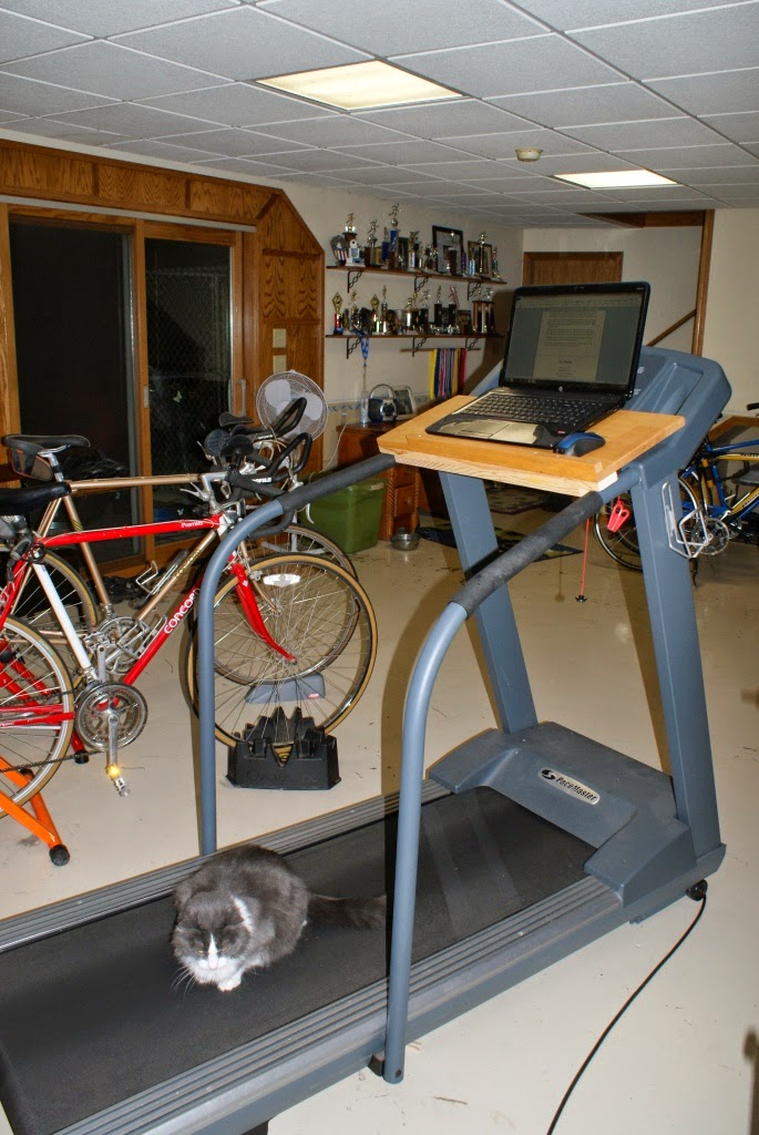 is elliptical or treadmill best what