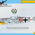Eduard 1/48 Bf 109 G-6 General Info (1st marking option) (-24)