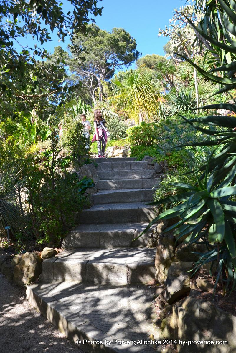 parc,escalier