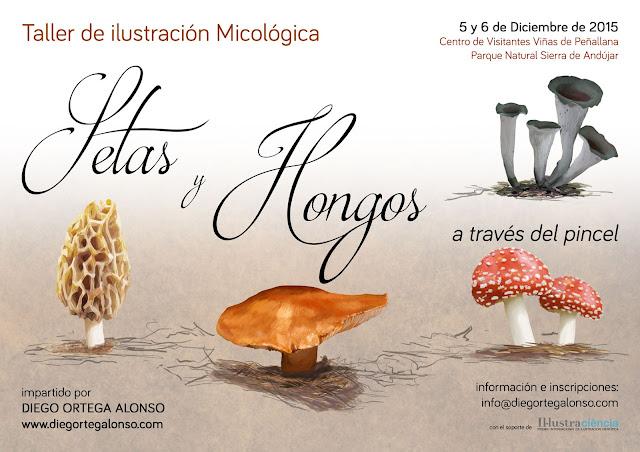 Taller de ilustración micológica setas y hongos Parque Natural Sierra de Andújar Diego Ortega Alonso