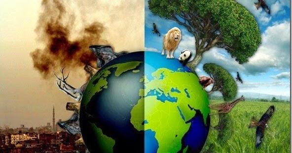 sexta extinção