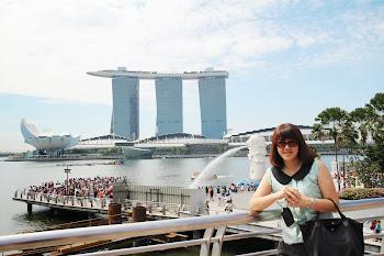 2013 ~ 新加坡