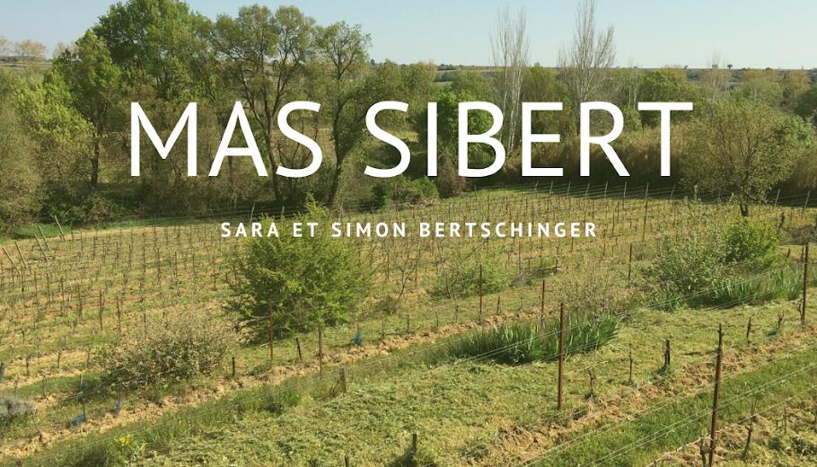 MAS SIBERT
