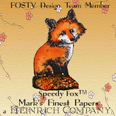 FOSTV Design Team Member
