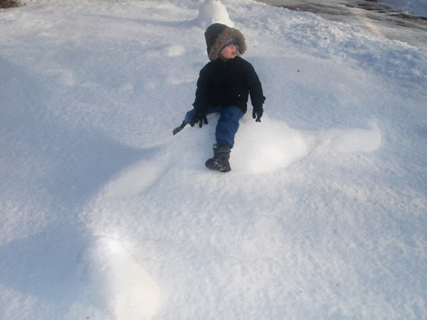 http://pipidinko.blogspot.ca/2014/03/snow-dinosaurs.html#.Ux1gp4VFClA