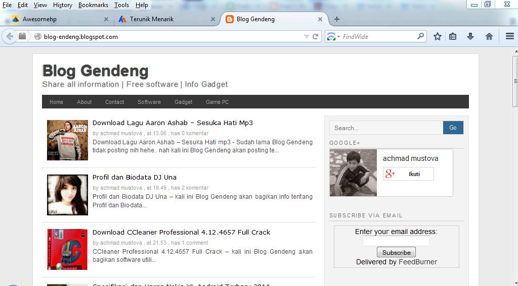 Download Mozilla Firefox 29.0 Final Update Terbaru 2014