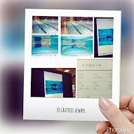 2016魚式游泳照片集