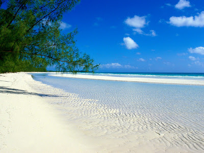 Blue sky on beach with white sand wallpaper