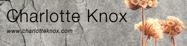Charlotte Knox