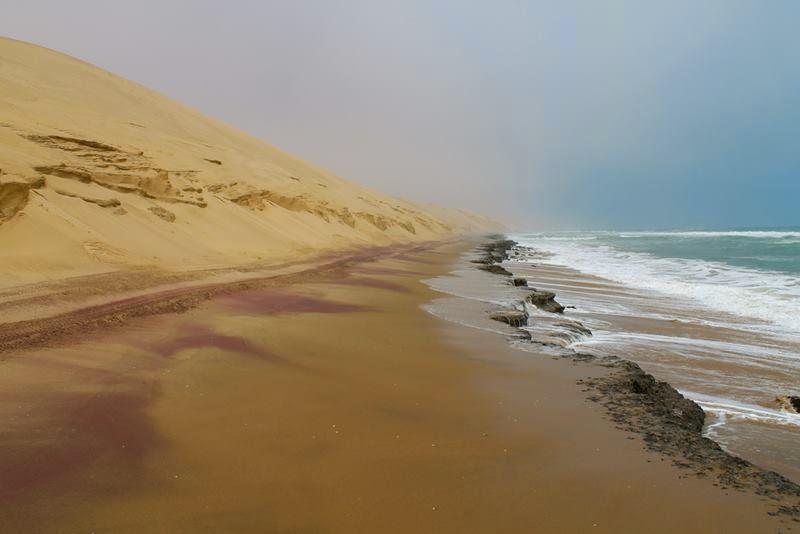 Where Desert Meets The Sea, Namib Desert