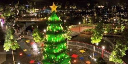 Ambon Raih Penghargaan Pohon Natal Terbanyak